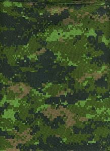 Canadian CADPAT_digital_camouflage_pattern_(Temperate_Woodland_variant)