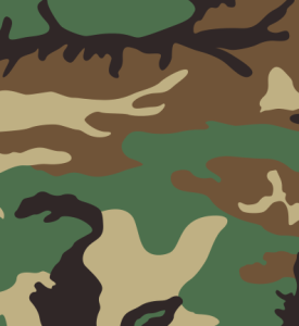US_Woodland_pattern